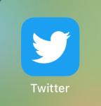 MUNDANE MYSTERIES: Why is the Twitter logo a bird?