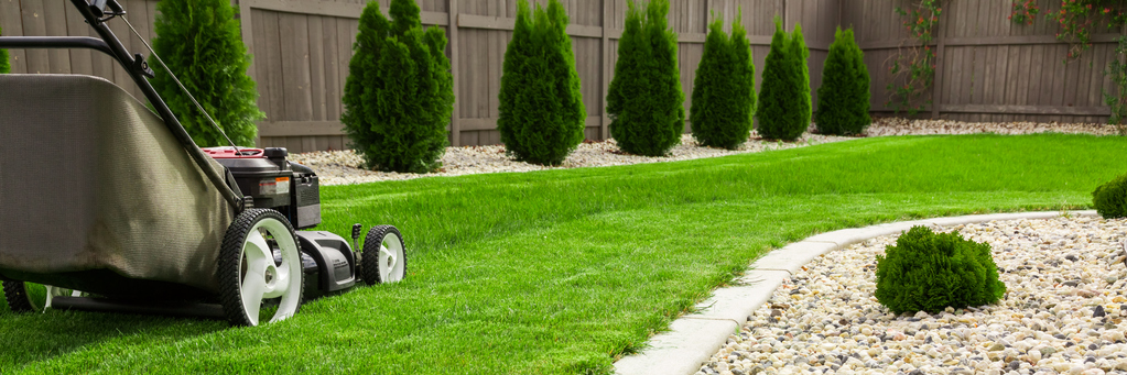 TELL ME SOMETHING GOOD: Teenage Sets Out To Mow 50 Lawns For 50 Veterans This Summer