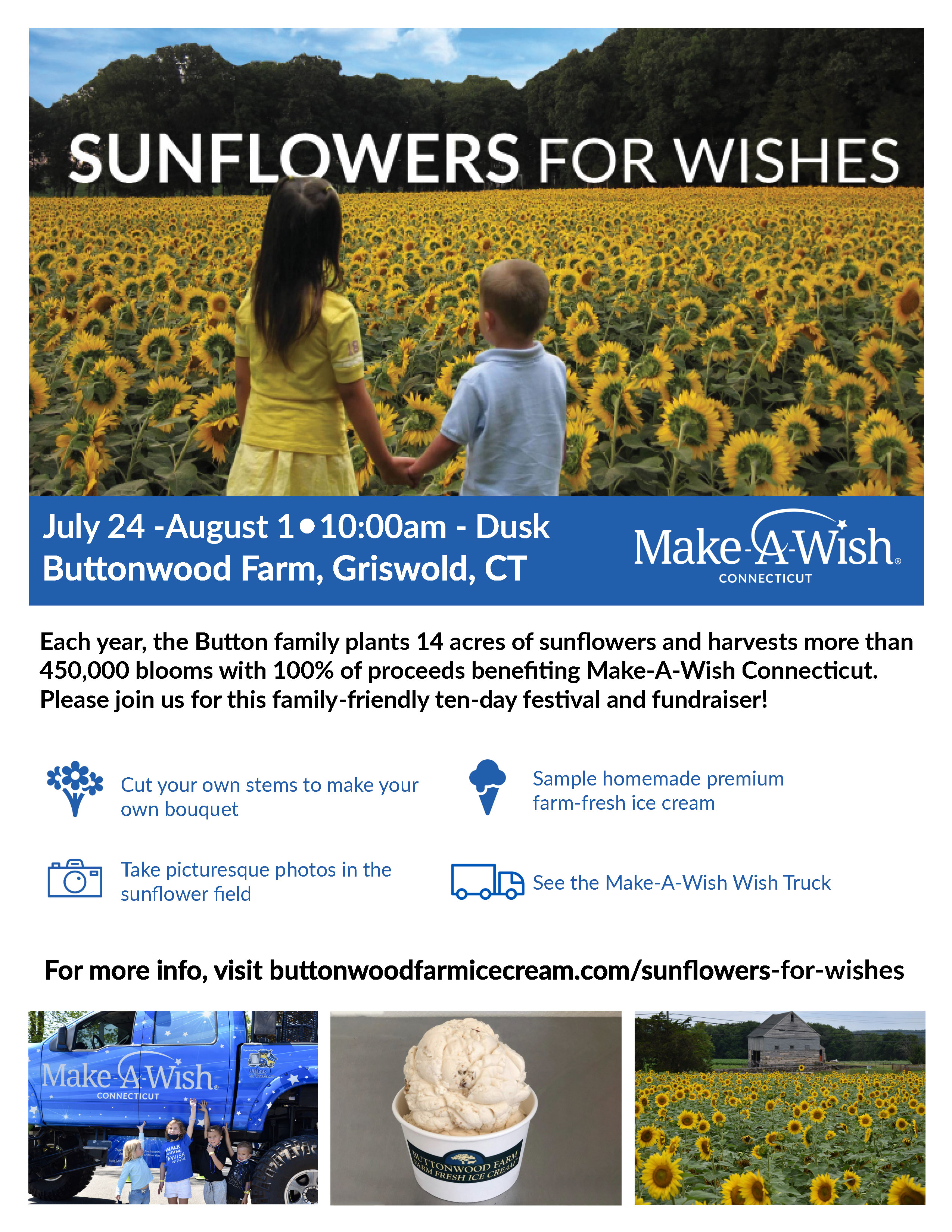 Sunflowers for Wishes at Buttonwood Farms