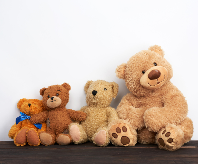 MUNDANE MYSTERIES: Why are they called Teddy Bears?