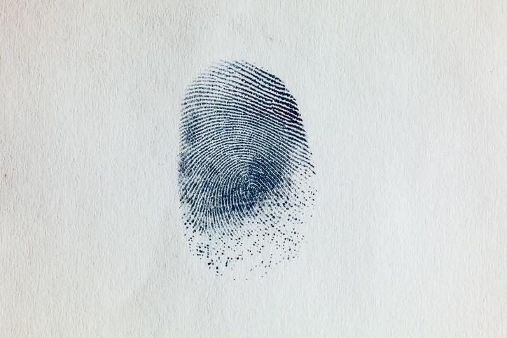MUNDANE MYSTERIES: Do babies have fingerprints?