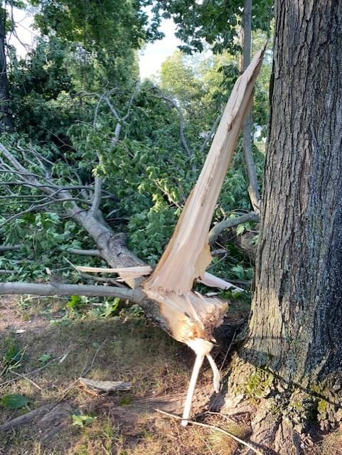 PODCAST – Wednesday, August 5: Storm Aftermath – How Long Will We Be Without Power?