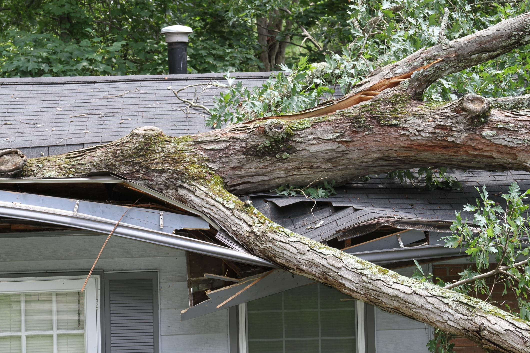 PODCAST – Friday, August 7: Fun Fact Friday, Tropical Storm Isaias Damage, And The 5 Worst Things About Losing Power