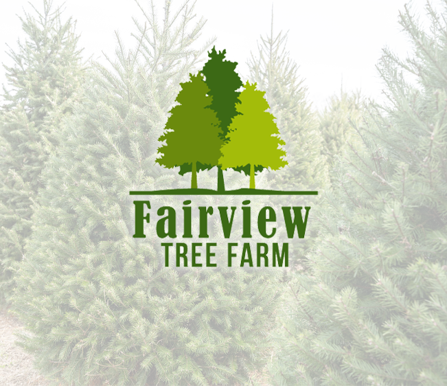 Win a Christmas Tree from Fairview Tree Farm