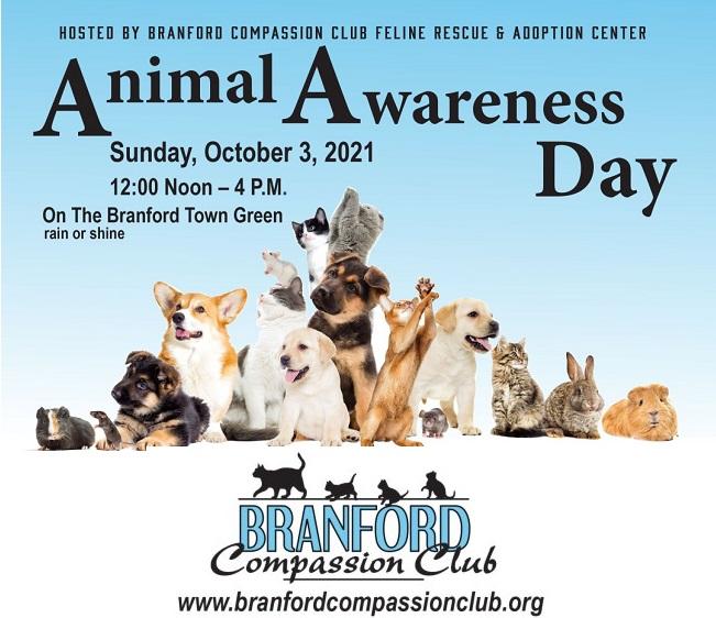 Animal Awareness Day