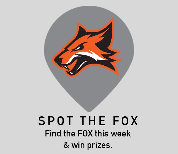 Spot the Fox