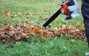 Worker cleaning falling leaves in autumn park. Man using leaf blower for cleaning autumn leaves. Autumn season. Park cleaning service.