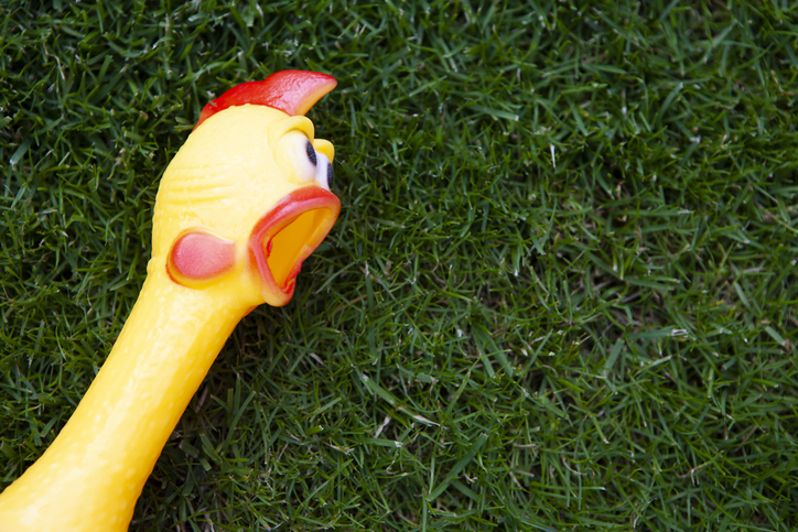 PODCAST – Wednesday, August 25: More Musical Rubber Chickens; Strange OnlyFans Requests; Amy Llinas Helps The Show Get Fit