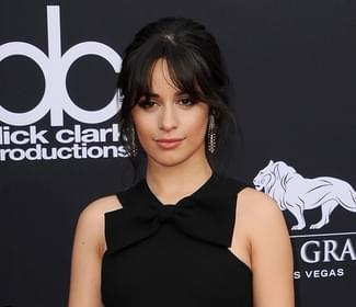 Camila Cabello and Shawn Mendes reveal new ink