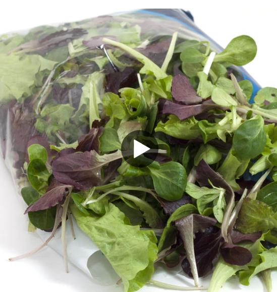WEBE Morning Hack: Bagged Lettuce Hack