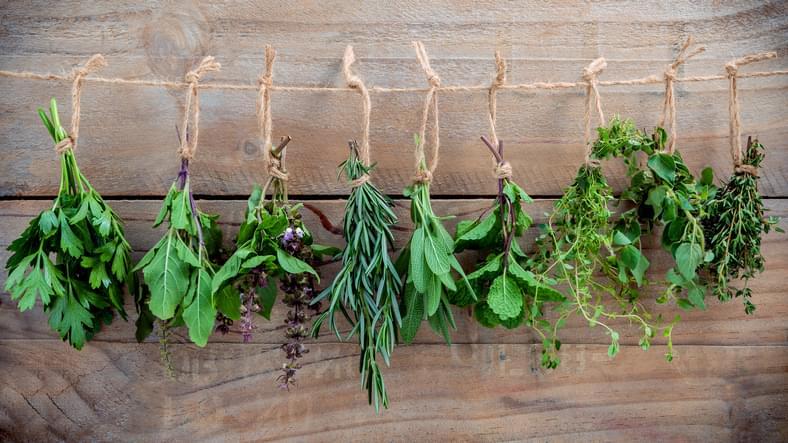 Morning Hack 10/21/20 Seasoning With Fresh Herbs!