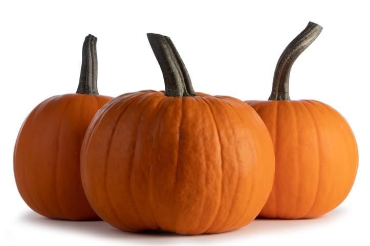Morning Hack 10/27/2020 Pumpkin Ice Bucket!