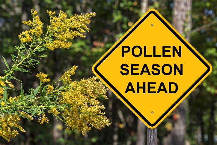 WEBE Wellness: Preparing For Allergies