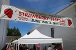 48th Annual Monroe Strawberry Festival Photos