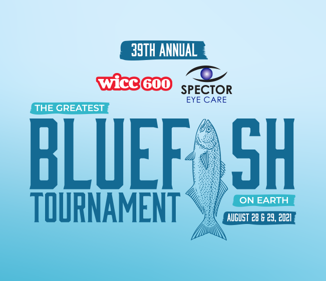 bluefish_651x562