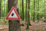 Melissa in the Morning: Lyme Disease & Covid Vaccines