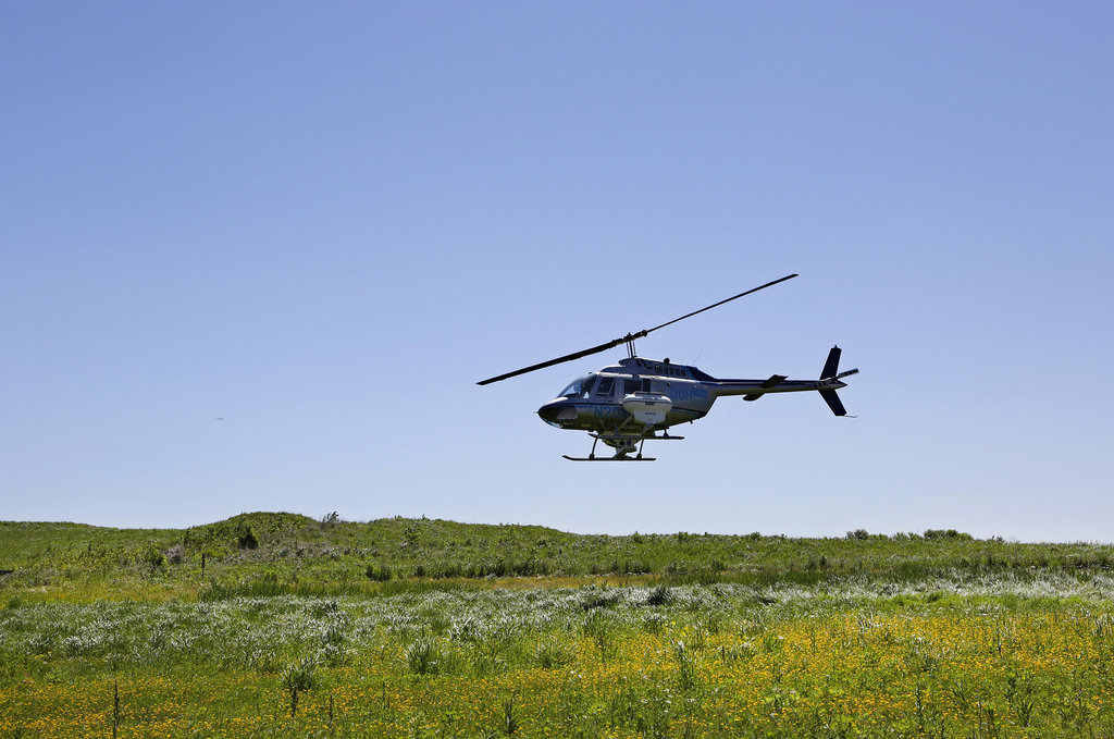 A low flying helicopter will apply pesticides today in Suffolk County