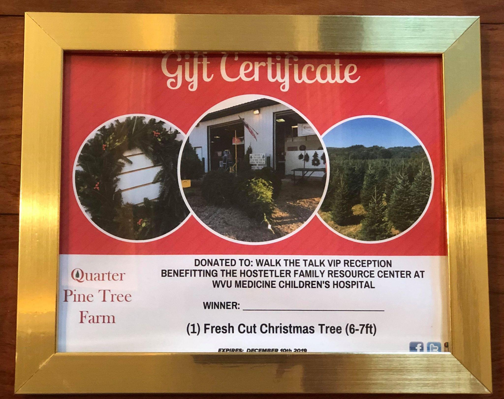 Quarter-Pine-Tree1