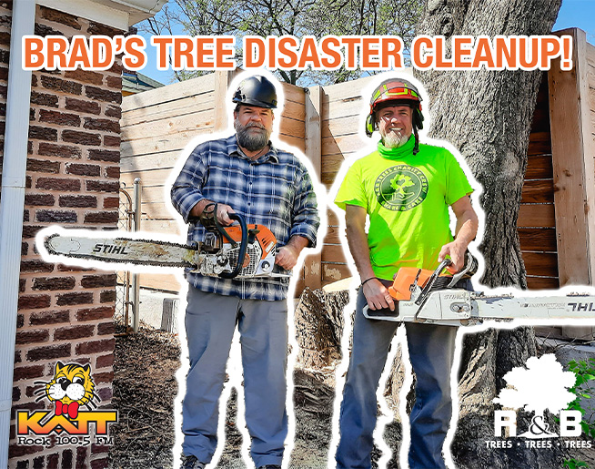 Watch Brad's Disaster Tree Cleanup