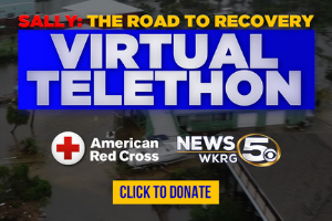 Sally: Road To Recovery Virtual Telethon