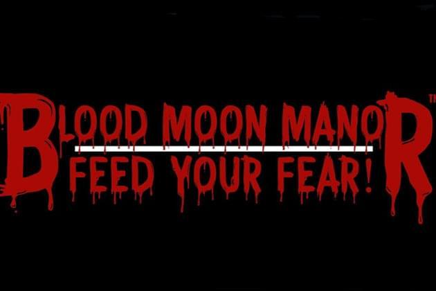 Blood Moon Manor FB Screen Shot