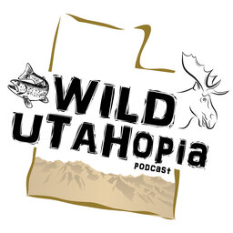 Do you have a wild side to your soul, Are you looking to your own Utopia., it's all here right in your own back yard it's all here in your Wild UTAHopia. If its Wild and its Utah its Wild Utahopia. We talk about hunting big and small game, flyfishing Utah's wild rivers, streams, and reservoirs, we cover backpacking and hiking Utah's high country in the Utah Outdoors, learn about emergency first aid. Its Informative with your host David Carr a lifelong outdoorsman.              David grew up in Utah and graduated from Jordan high school. If you ever want to find David Carr, you can catch him outside, in the wild Utahopia