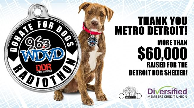 Donate For Dogs Radiothon