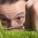 The Inside Outside Guys: Maintaining Your Lawn