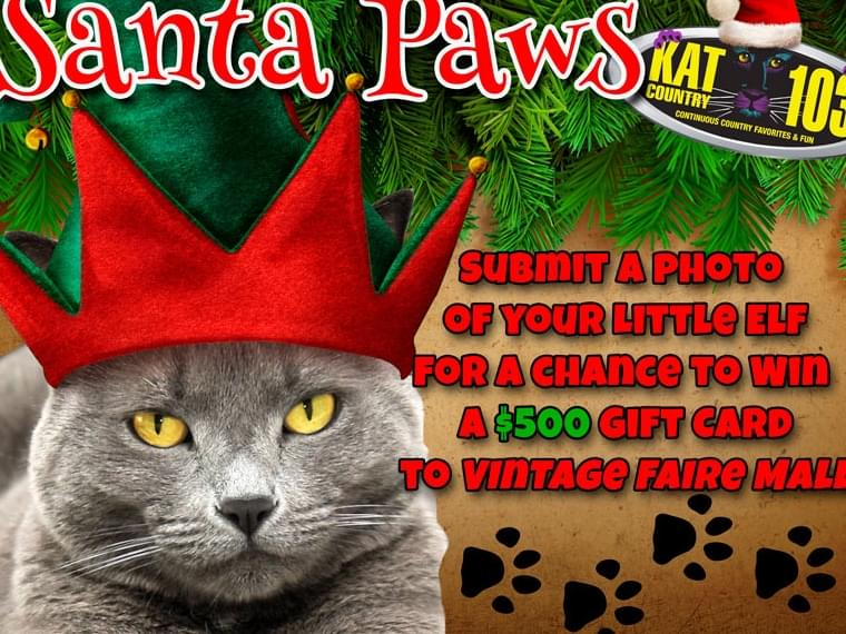 KAT COUNTRY 103 and Vintage Faire Mall present…Santa Paws!