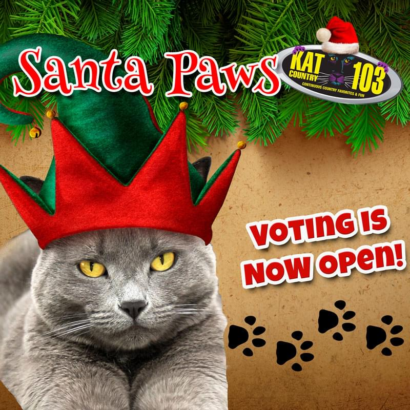 Santa Paws voting is now open!