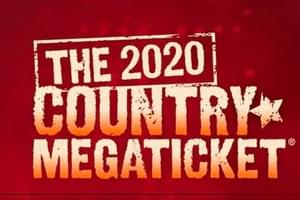The 2020 Mega Ticket is coming!!