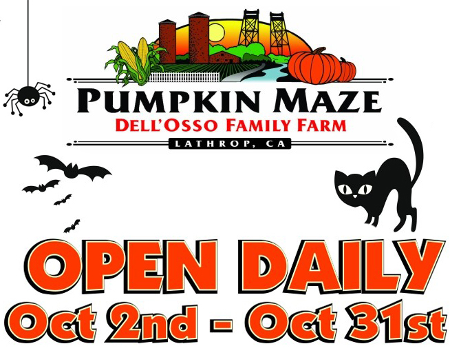 Pumpkin Maze Dell'Osso Family Farm