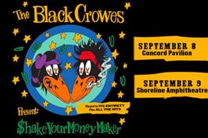 The Black Crowes 30th Anniversary Reunion Tour