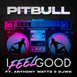 "Rick's Pick – Pitbull Ft. Anthony Watts & DJWS – ""I Feel Good"""