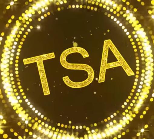 TSA's top 10 finds