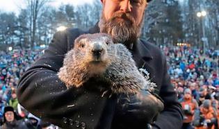 PETA calls for Punxsutawney Phil to be replaced