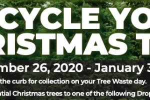 houtx_christmas_tree_recycle