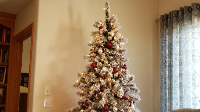 How To Give Your Christmas Tree a 'Second Life' After The Holidays