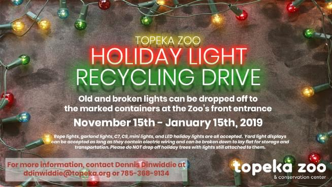 If You Have Old Christmas Lights That Don't Work, There Is A Place To Dispose Them