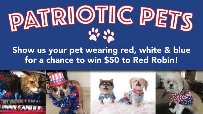 Patriotic Pet Photo Contest