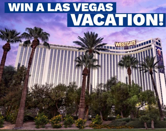 Las Vegas Vacation!