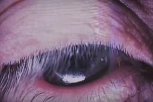 Chester Bennington's Vocals on New Track