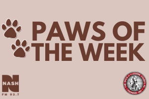Paws of the Week