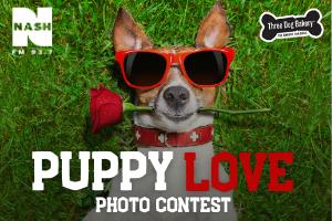 Puppy Love Photo Contest