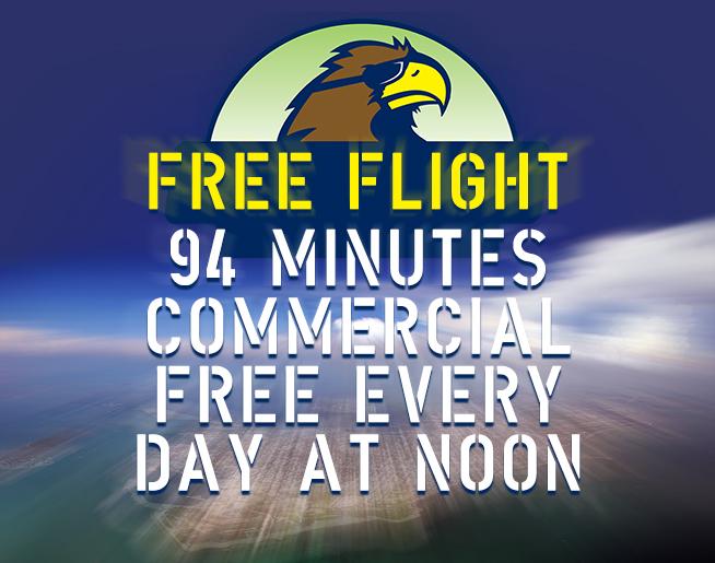 Hawk Free Flight