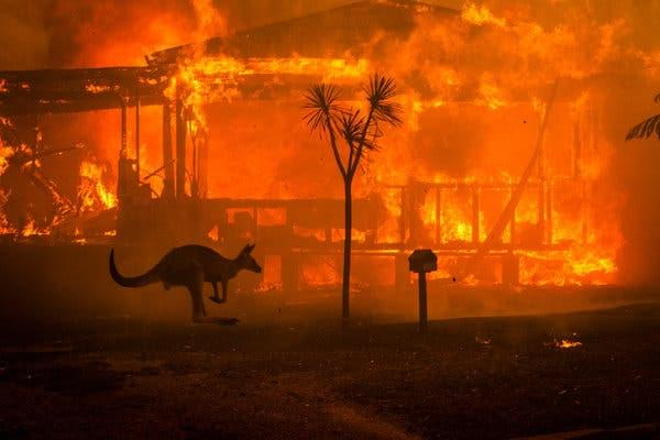 Jen and Frank talk with Shane Gaynon about the Australian Wildfires