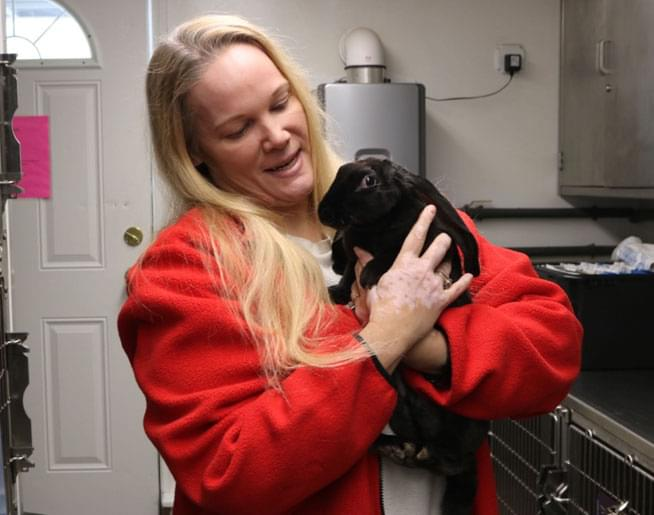Jen talked to Leigh Grady from the Sterling Animal Shelter