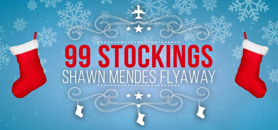 99 Stockings Shawn Mendes Flyaway