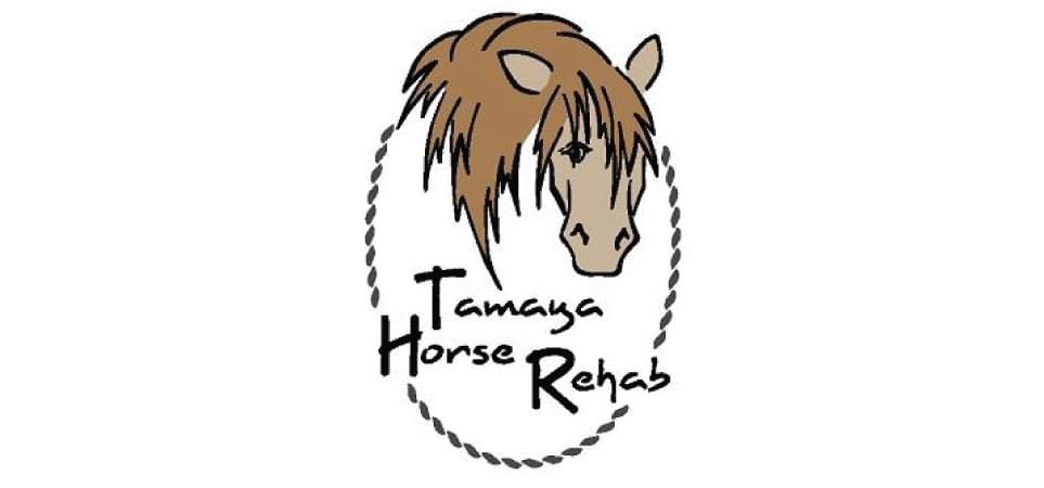 "3rd annual Tamaya Horse Rehab ""Horseshoes & Heels gala"