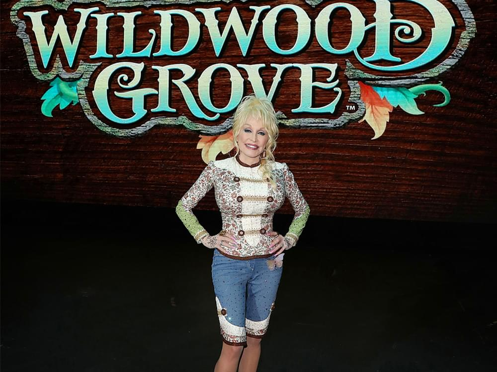 Dolly Parton's $37-Million Expansion at Dollywood Will Feature New Roller Coaster, Climbing Structure, Restaurant & More